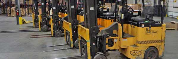 Bendi Swivel Front Forklifts