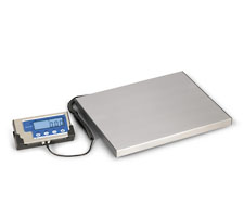 Stainless Steel Platform Bench Scale