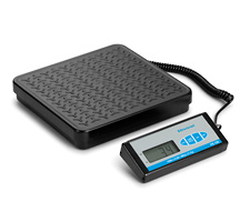 Treadplate Platform Bench Scale