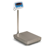 Model S100 Industrial Bench Scale